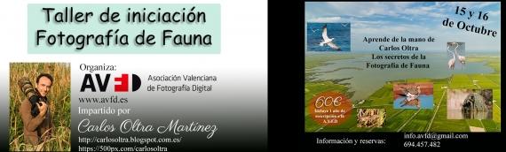 Taller fotografía de Fauna con Carlos Oltra